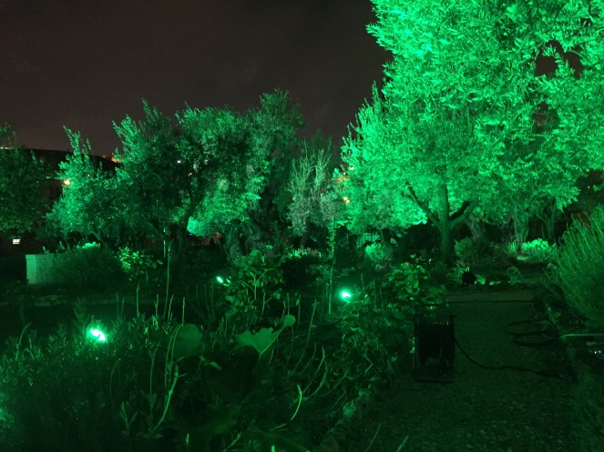 The Garden lit up for the Day of Atonement.
